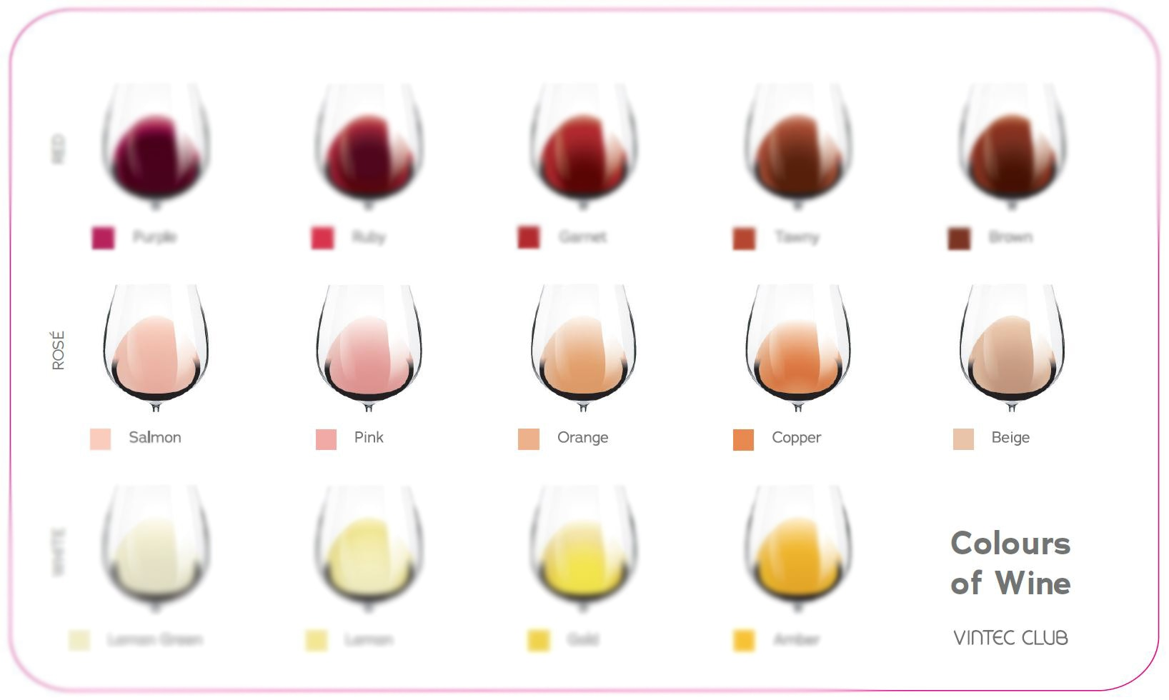 Colours of Wine_wideshot_res.jpg